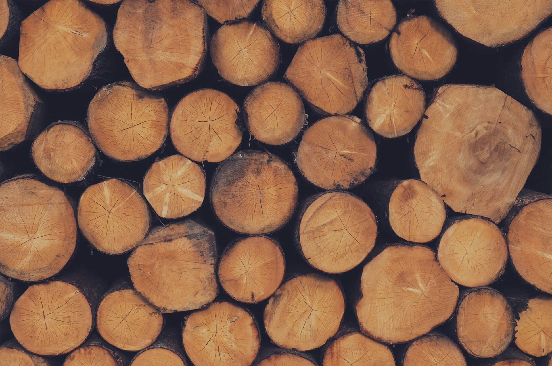 Seasoned Softwood Logs